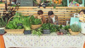 Một gian hàng rau củ quả trong chợ